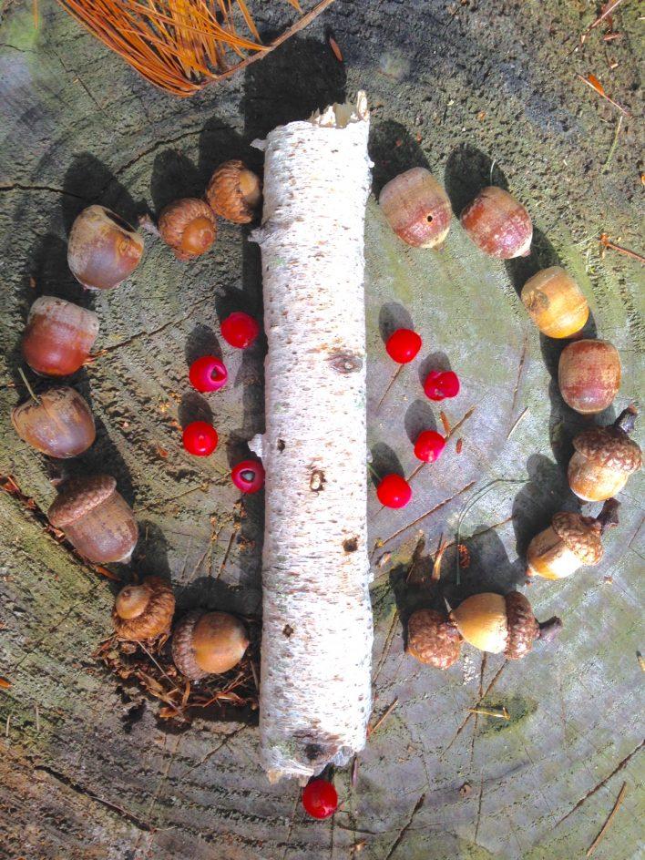 acorn berry mandala